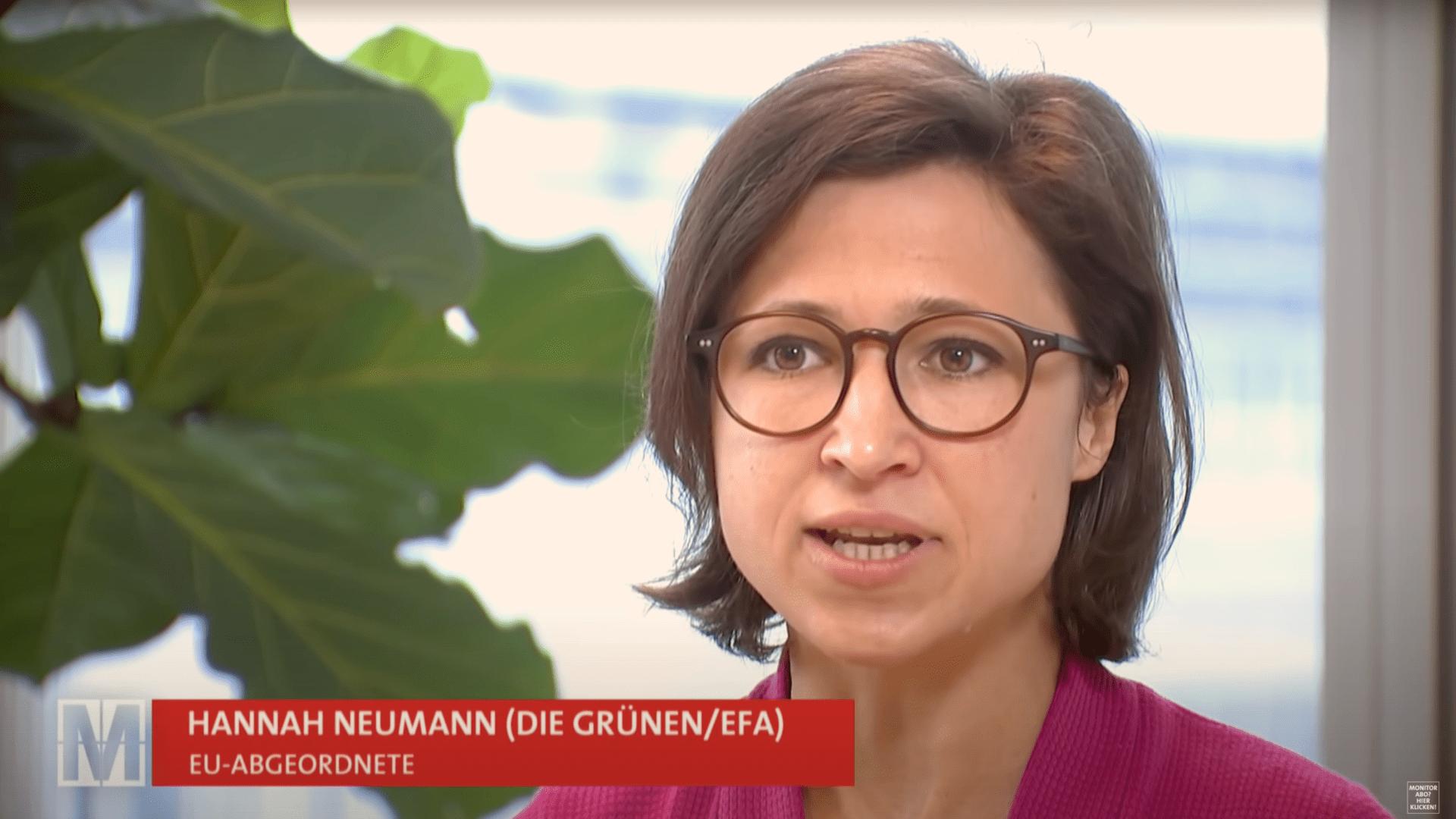 """Die """"Europäische Friedensfazilität"""": Meine Kritikpunkte in den Medien"""